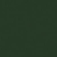 AP-30-ciemny-zielony-1